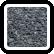 Kornik czarny